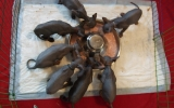 Kittens07181672008933565001.JPG
